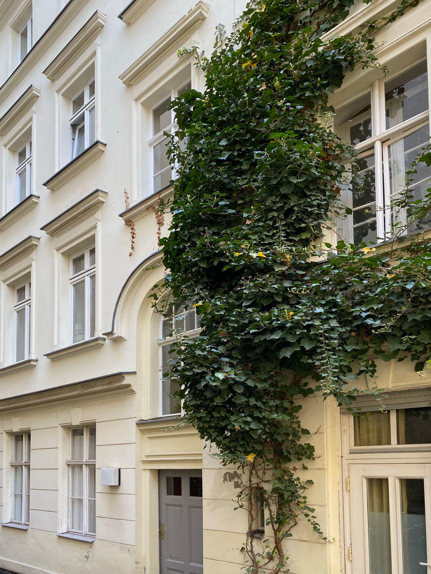 Elisabethkirchstraße 13
